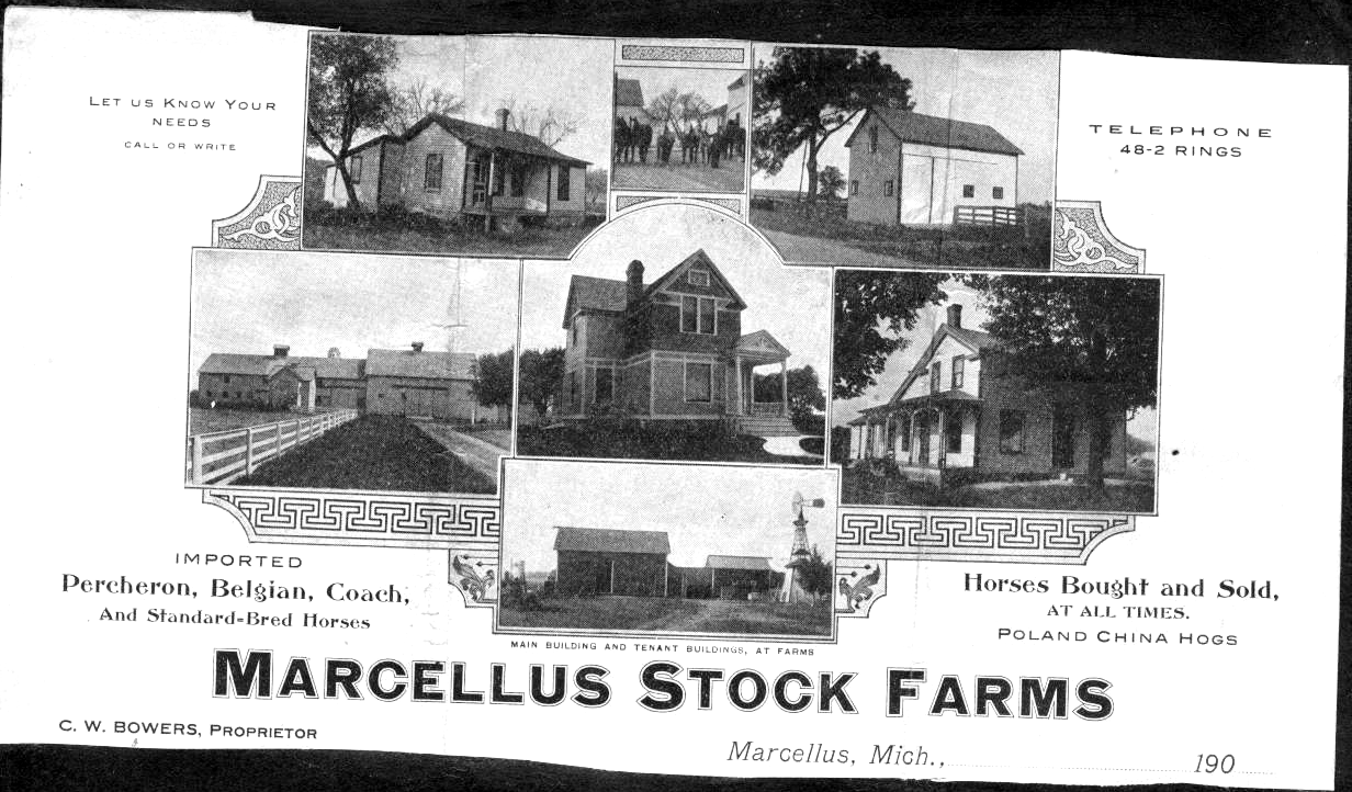 Stock Farms
